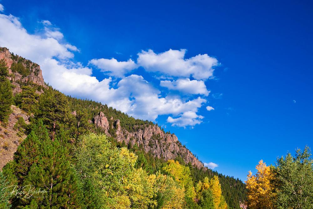 Fall color under the Rio Grande Palisades (Highway 149), Rio Grande National Forest, Colorado