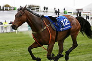 Cracking Find has lost jockey danny cook but races on regardless in the 4.40pm The Close Brothers Red Rum Handicap Steeple Chase (Grade 3) 2m during the Grand National Festival Week at Aintree, Liverpool, United Kingdom on 4 April 2019.