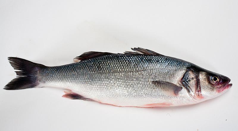 bronzing whole fish