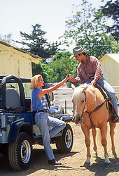 cowboy handing a girl a rose from the back of a horse on a ranch