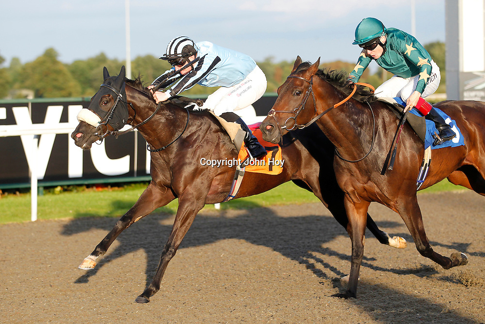 Red Tulip and Freddie Tylicki winning the 6.20 race
