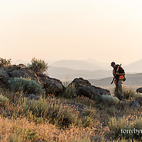 man with dog hunting upland birds