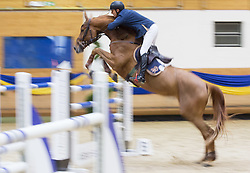 Angel Niagolov of Bulgaria with his horse Cartina 8 jumps during Equestrian competition  FEI Grand Prix World Cup Celje 2014, on November 30, 2014 in Equestrian Centre Celje, Slovenia. Photo by Vid Ponikvar / Sportida