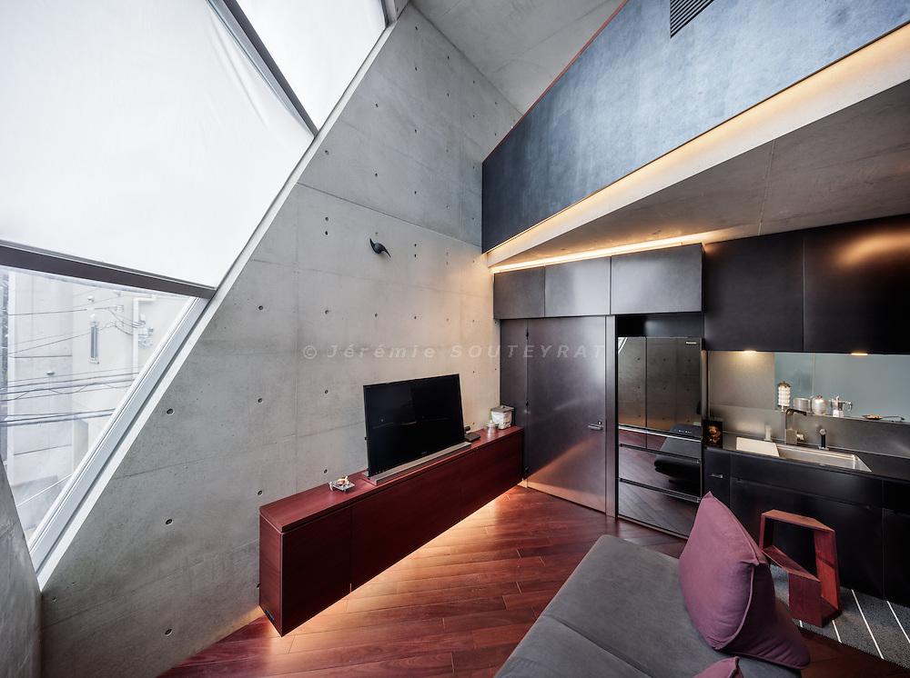 Tokyo, September 27 2015 - R-Torso-C House by Atelier Tekuto.