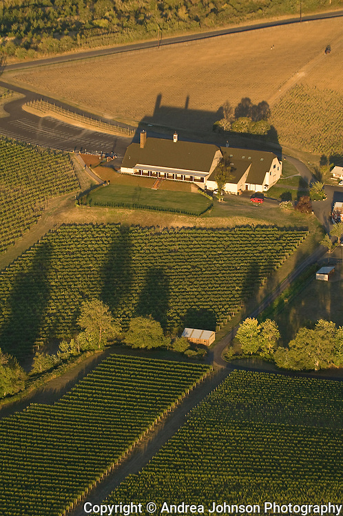 Aerial view over St. Innocent Winery, Eola Hills AVA, Willamette Valley, Oregon