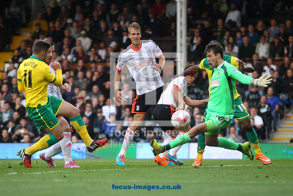 Gary Hooper of Norwich sees his shot saved by Marcus Bettinelli of Fulham during the Sky Bet Championship match at Craven Cottage, London<br /> Picture by Paul Chesterton/Focus Images Ltd +44 7904 640267<br /> 18/10/2014