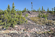 Boreal forest and PreCambrian Shield<br /> Near Yellowknife<br /> Northwest Territories<br /> Canada