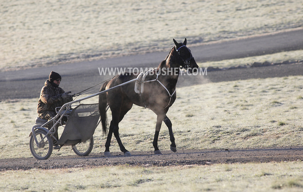 Town of Wallkill, New York  - A harness racing horse and trainer head back to the barn after  working out on a cold morning at the Mark Ford Training Center on  Dec.12, 2011.
