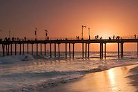 Surfer Riding Wave at Sunset Next to Huntington Beach Pier, California