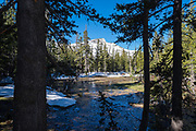 Morming in Yosemite National Park, with a view of Tresidder Peak through the trees, California.