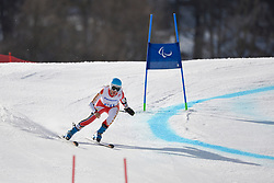 Erin Latimer, Women's Giant Slalom at the 2014 Sochi Winter Paralympic Games, Russia
