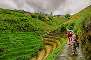 A familly walking up the path to Tiantouzhai village, Dragon's backbone Rice terraces, China
