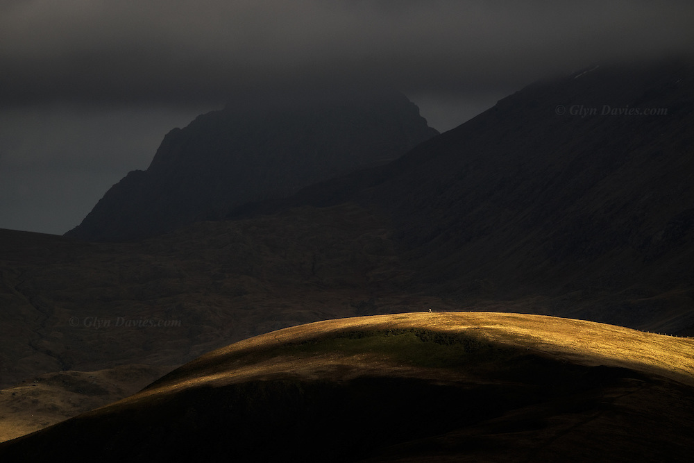 The wonderful sunlight of the morning was gradually disappearing - once scudding cloud shadows now dark sheets across the landscape - the cold winds now seemed bitter. As the weather front moved closer, last beams of direct sunlight illuminated isolated hills and peaks created a theatrically sculpted topography. Moel Cynghorion feels the last warmth as Tryfan stands imposing in the backgrpound shadows.