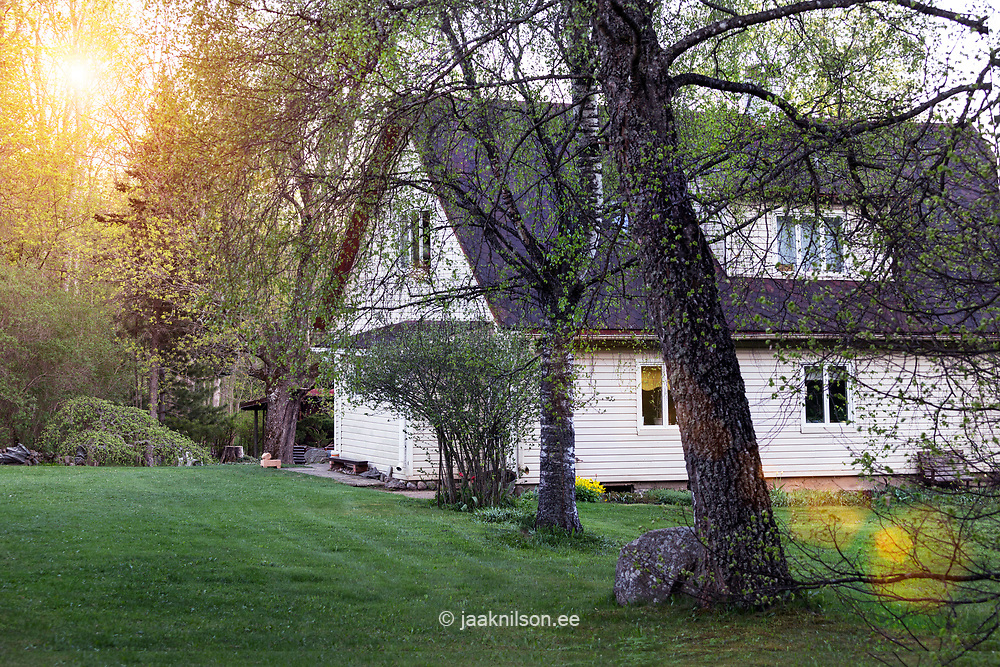 Building in Estonia. Countryside, homestead wirh garden, lawn, trees.