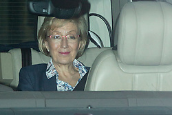 © Licensed to London News Pictures. 16/12/2019. London, UK. Secretary of State for Business, Energy and Industrial Strategy Andrea Leadsom arrives at The Houses of Parliament .  Photo credit: George Cracknell Wright/LNP
