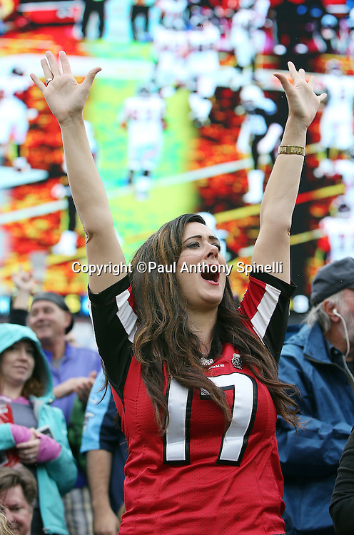 An Atlanta Falcons fan cheers after a touchdown during the Atlanta Falcons 2015 week 7 regular season NFL football game against the Tennessee Titans on Sunday, Oct. 25, 2015 in Nashville, Tenn. The Falcons won the game 10-7. (©Paul Anthony Spinelli)