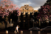 Belo Horizonte_MG, Brasil...Edificio do Palacio da Liberdade, localizado na Praca da Liberdade. Sede do governo de Minas Gerais ate este ano (2010), o edificio foi construido em 1897, junto com a capital Belo Horizonte, Minas Gerais...Liberdade Palace, located in Liberdade square. The build was built in 1987 in Belo Horizonte, Minas Gerais...Foto: LEO DRUMOND / NITRO