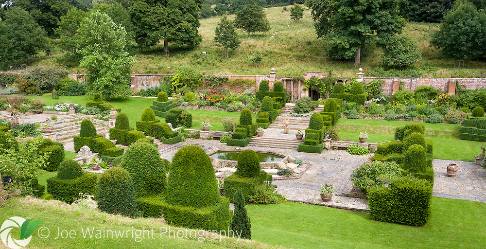 Ornately trimmed yew shapes line steps and punctuate the lawns, looking down into the gardens at Mapperton, Dorset.