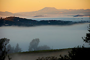 Sunrise, Napa Valley, CA. Seen from Menzel/D<br /> Aluisio guest house deck.