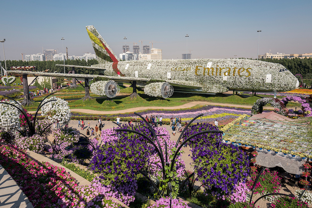 DUBAI, UAE — DECEMBER 30, 2016: Miracle Gardens in Dubailand with a replica of an Emirates A380.