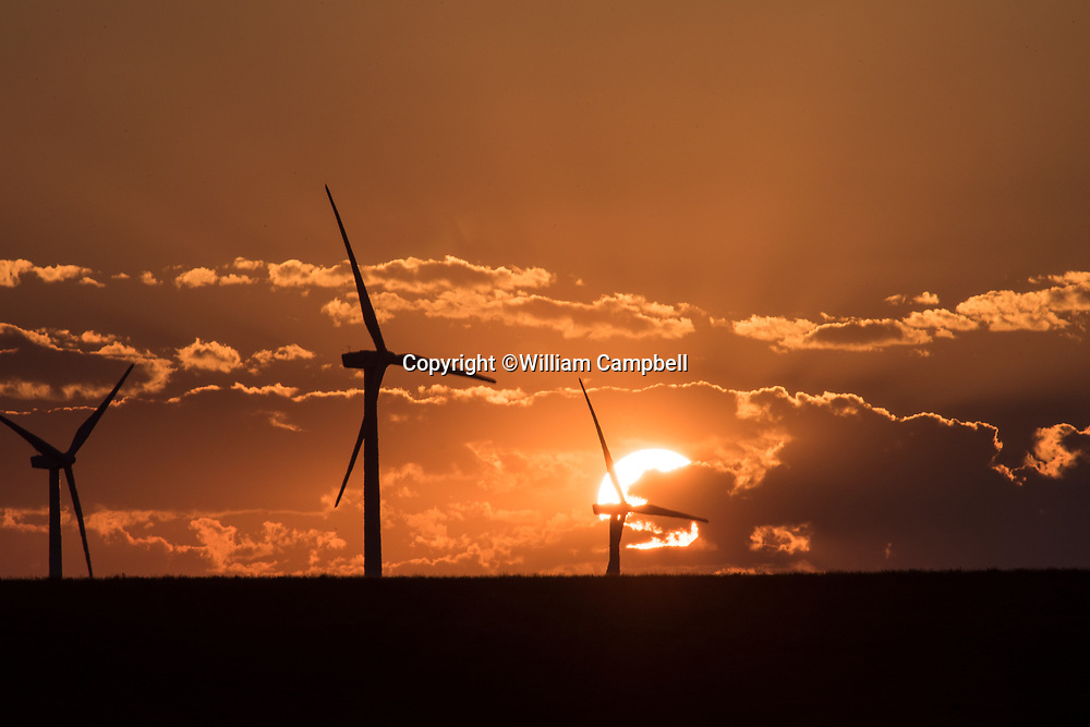 KEVIN,MT-JULY,31: Wind turbines on private working ranch land near Kevin, MT on July 31,2017. The Rim Rock Wind Farm is operated by NaturEner USA with 126 wind turbines over 21,000 acres of private land. The wind farm generates 189 MV, enough electricity per year for 60,000 households. The Acciona AW 77 1.5 MV turbines are 262 feet tall. Each blade is 118 feet long. (Photo by William Campbell-Corbis via Getty Images)
