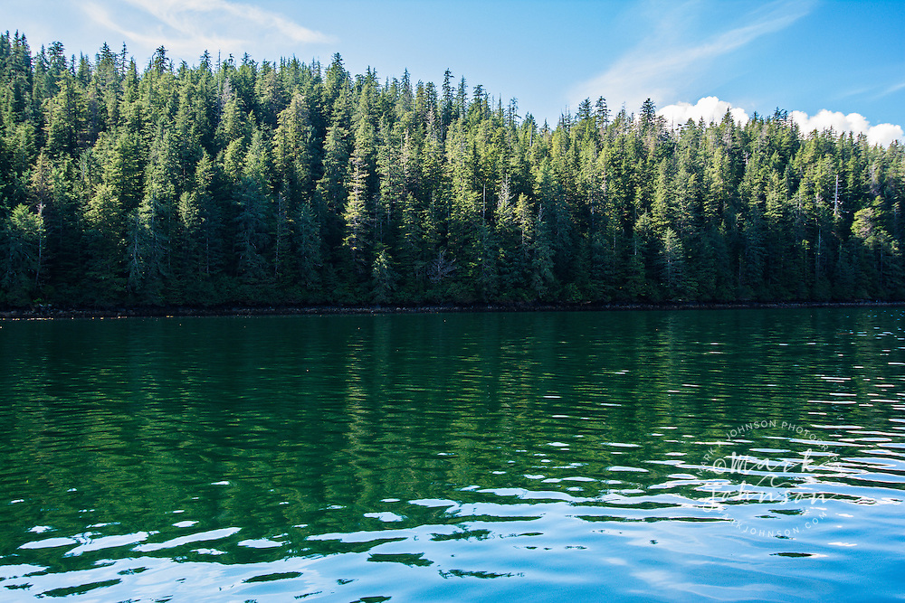 Forest reflected in the calm water, Tongass National Forest, Inside Passage, Southeast Alaska, USA