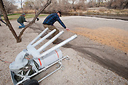 Biologists prepare air cannon & rocket net for Wood Duck capture, Aix sponsa, Churchill County, Nevada