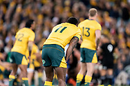 SYDNEY, NSW - AUGUST 18: Australian player Marika Koroibete (11) waits to get the ball at the Bledisloe Cup rugby test match between Australia and New Zealand at ANZ Stadium in Sydney on August 18, 2018. (Photo by Speed Media/Icon Sportswire)
