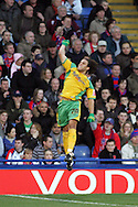 London - Tuesday, January 1st, 2008: Darel Russell of Norwich City celebrates his goal during the Coca Cola Championship match at Selhurst Park, London. (Pic by Mark Chapman/Focus Images)