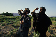 Afghanistan. Helmand province. Soviet helicopters bombard mujahidin positions  at Argandab.  Kandahar area  Afghanistan     /    Des hélicoptères soviétiques bombardent des positions moudjahidines à Argandab.  Kandahar region  Afghanistan