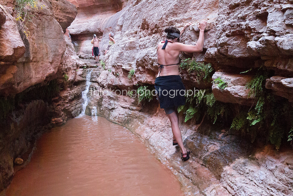 Woman (30's) traverses along fern covered wall on side hike in Grand Canyon, AZ