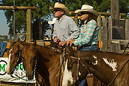 Tom McGuane, author, and wife Laurie compete in cutting horse competition, Big Timber Montana