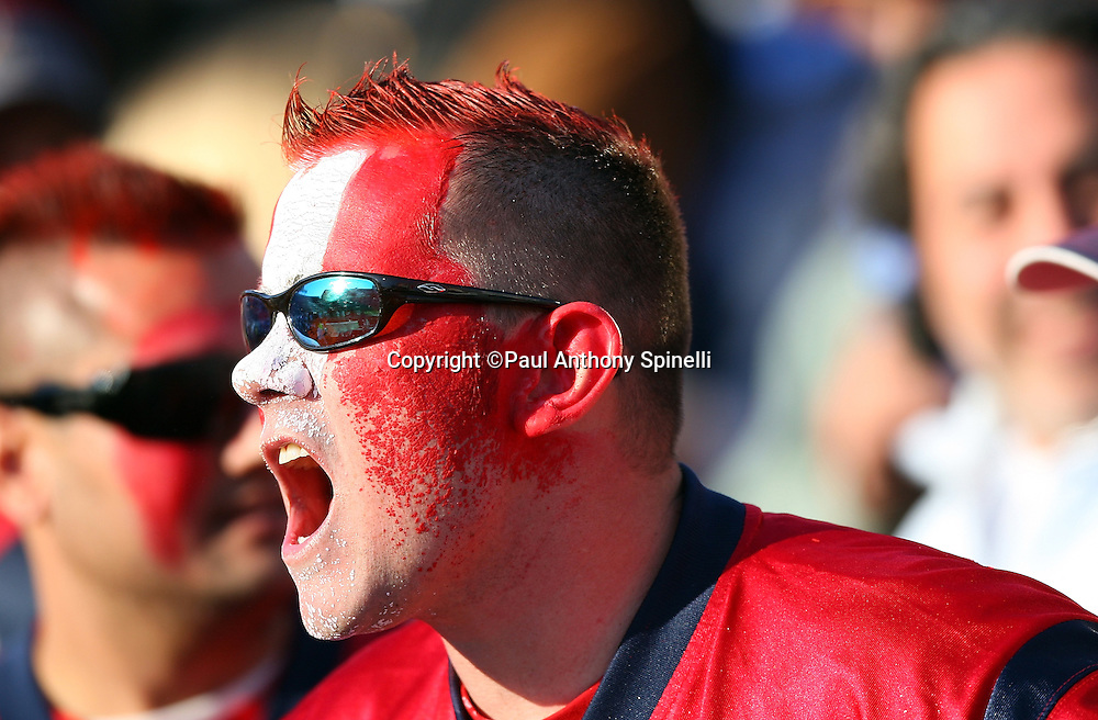 A Houston Texans fans with a Texans jersey and a painted face cheers during the NFL football game against the Buffalo Bills, November 1, 2009 in Orchard Park, New York. The Texans won the game 31-10. (©Paul Anthony Spinelli)