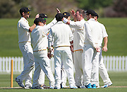 Mark Gillespie of Wellington Firebirds is congratulated by team mates after getting the wicket of Neil Broom of Wellington Firebirds during the Plunket Shield match between Canterbury v Wellington Firebirds held at Hagley Oval, Christchurch. 25 October 2014 Photo: Joseph Johnson/www.photosport.co.nz