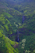 Mt. Waialaale, Kauai, Hawaii, Wettest spot on earth