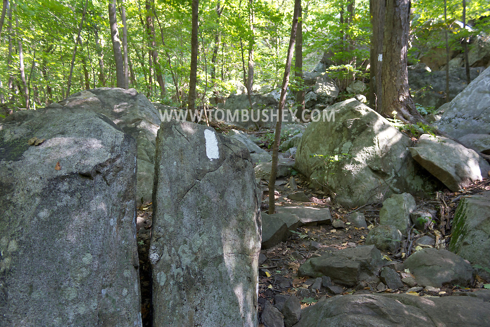 Vernon, New Jersey - White trail blazes on the rocks and trees on the Appalachian Trail at the base of Wawayanda Mountain on Sept. 22, 2012.
