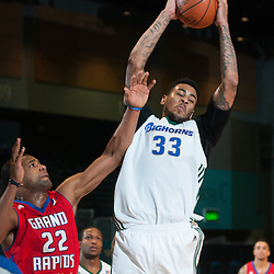 111614 - Reno Bighorns v. Grand Rapids Drive
