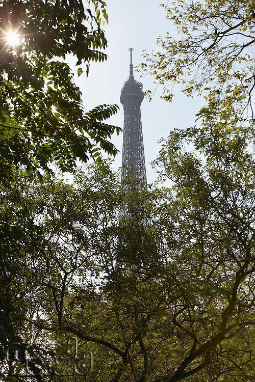 France Paris top of Eiffel tower through trees