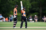 Danielle Wyatt of Southern Vipers raises his bat on reaching her half-century during the Women's Cricket Super League match between Southern Vipers and Surrey Stars at Arundel Castle, Arundel, United Kingdom on 18 August 2019.