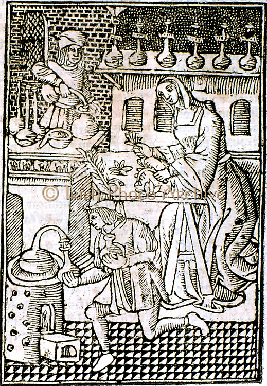 Distillation of medicines.  Female in centre is sorting herbs to be used in various concoctions.  From 'Le livre de la propriete des choses' (On the Properites of Things) written by the English Franciscan monk Bartholomew Glanville called Bartolomaeus Ang