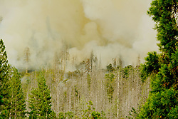 July 26, 2018 - Yosemite, California, U.S. - Burning Operations behind Jerseydale Ranger Station. A wildfire has burned through more than 38,000 acres near Yosemite National Park in California, and it hasn't stopped for two weeks. The Ferguson Fire has continued since the fire started west of Yosemite on July 13, aided by high temperatures and dry air. The wildfire has injured seven firefighters and killed one. (Credit Image: © Cal Fire via ZUMA Wire/ZUMAPRESS.com)