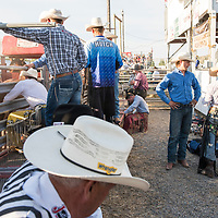 Cowboys get ready to ride in the Livingston Roundup Rodeo in Montana.