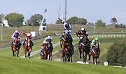 Jockey Luke Morris rides Jazri to victory during the 3.50 race at Brighton Racecourse, Brighton & Hove, United Kingdom on 10 June 2015. Photo by Bennett Dean.