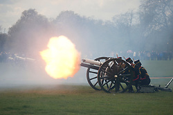© licensed to London News Pictures. London, UK 21/04/2012. 41 rounds of cannon and gun shots being fired by the King's Troop Royal Horse Artillery in Hyde Park at this noon to mark the Queen's birthday. Photo credit: Tolga Akmen/LNP