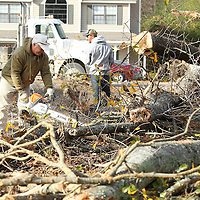 Adam Robison | BUY AT PHOTOS.DJOURNAL.COM<br /> Javier Izagvirre, a foreman with Enscor Construction based in Arlington Tennessee, cuts one of the many trees that have been taken down at the corner lot of Joyner Ave and Jackson Street Thursday morning.