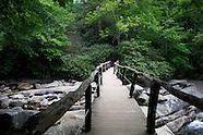 Great Smoky Mountain National Park, 2011