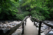 Wooden bridge over river, Great Smoky Mountain National Park