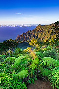 Kalalau Valley and the Na Pali Coast from the Pihea Trail,  Kokee State Park, Kauai, Hawaii USA