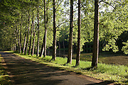 Tree lined avenue near St Leon sur Vezere in the Perigord Noir region of France