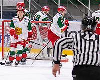 2019-12-02 | Umeå, Sweden:Mora IK are disappointed after 1-0 in HockeyAllsvenskan during the game  between Björklöven and Mora at A3 Arena ( Photo by: Michael Lundström | Swe Press Photo )<br /> <br /> Keywords: Umeå, Hockey, HockeyAllsvenskan, A3 Arena, Björklöven, Mora, mlbm191202